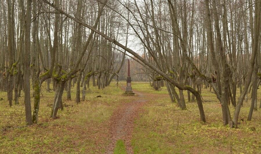 обелиск в парке ярополец